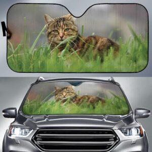 Cat Car Sun Shade