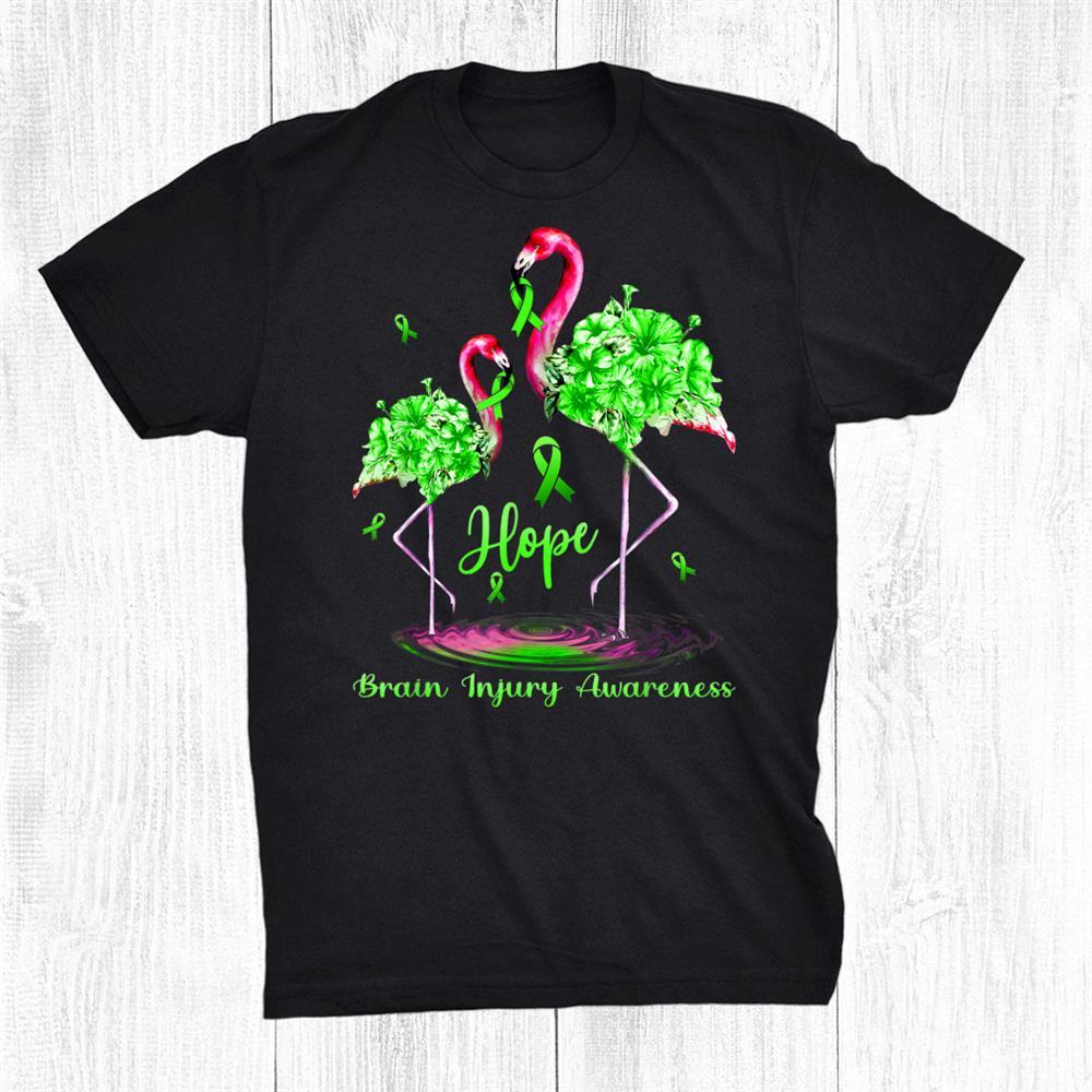 Flamingo Brain Injury Awareness Shirt