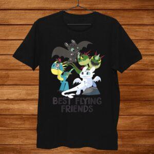 How To Train Your Dragon Hidden World Best Friends Shirt