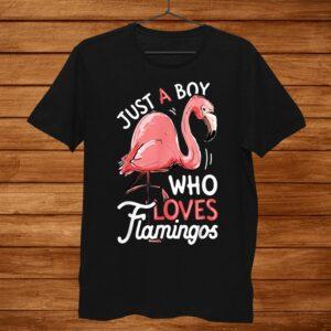 Just A Boy Who Loves Flamingos Shirt Pink Flamingo Lovers Shirt
