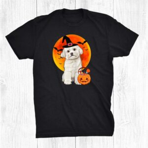 Maltese Behind The Lantern Pumpkin Halloween Shirt