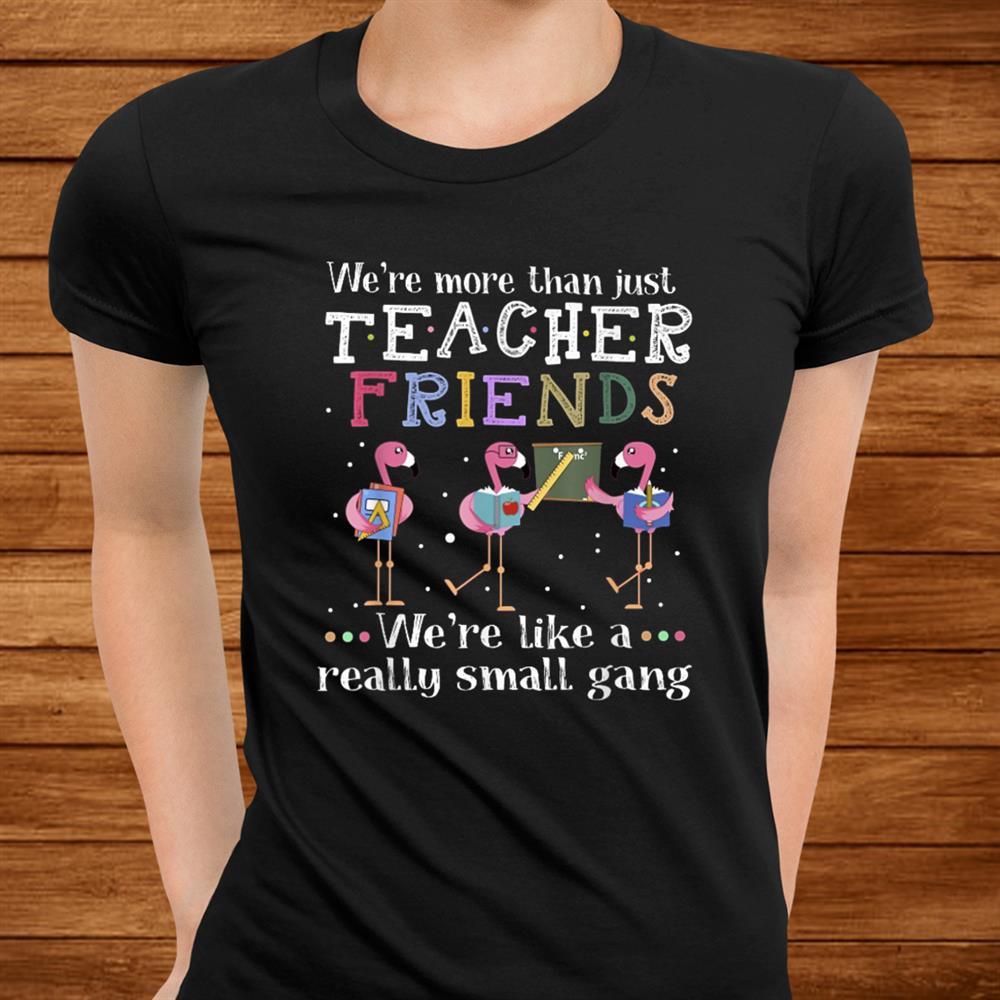 Were More Than Just Teacher Friends Flamingo Shirt